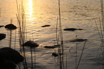 lake-1088049_by_carolineandersson_pixabay_CC0