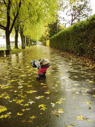 rain-by_mateya_pixabay_cc0